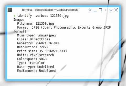 Imagemagick: identity -verbose