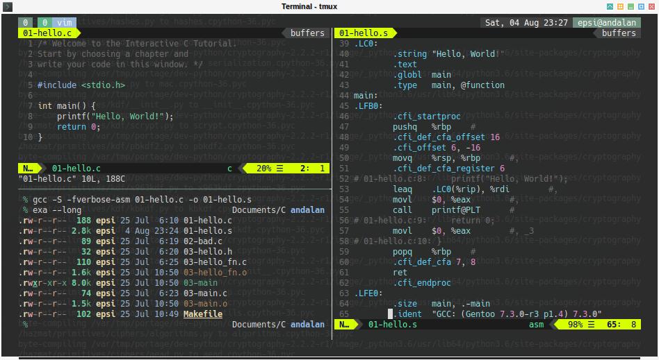 Terminal Ricing: tmux + vim + gcc + C + Assembler