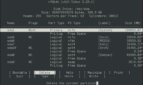 Multiboot: cfdisk
