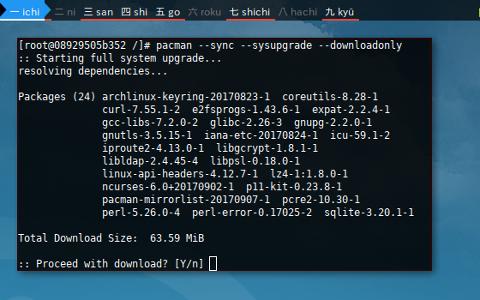 Docker pacman: download