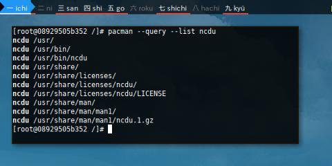Docker pacman: query list