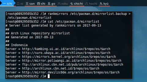 Docker Arch: rankmirrors