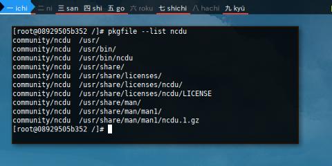 Docker Arch: pkgfile list