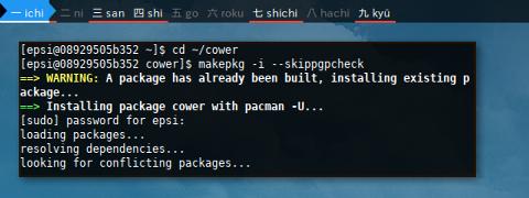 Docker AUR: Cower: makepkg