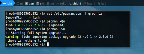 Docker pacman.conf: IgnoredPkg
