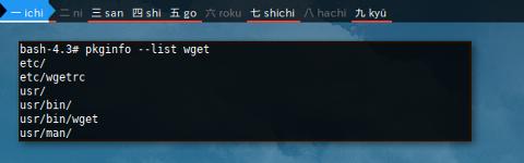 Docker Void: pkginfo list