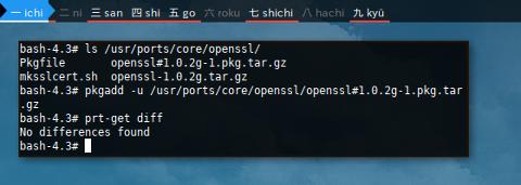 Docker Crux: pkgadd Update