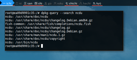 Docker DPKG: Search