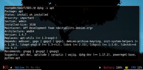 Docker DPKG: Query Status