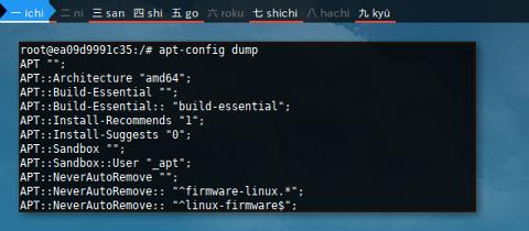Docker APT: config dump