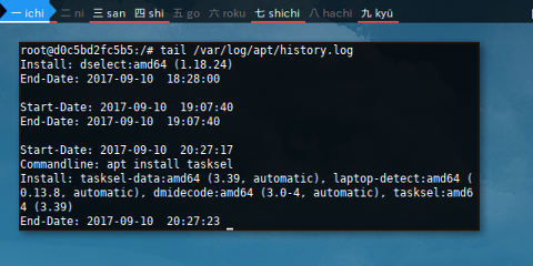Docker: /var/log/apt/history.log