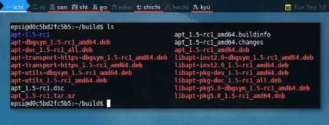 Docker APT-SRC: Directory Result