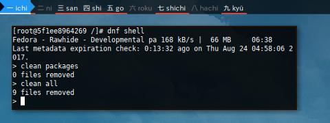 Docker Fedora: DNFShell