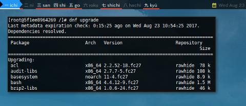 Docker DNF: Upgrade