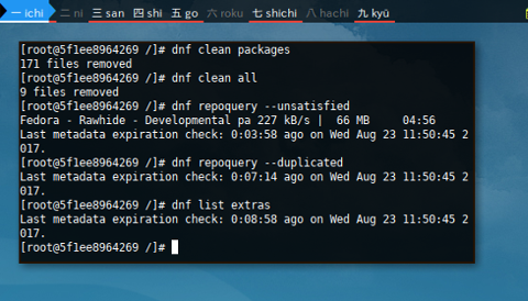 Docker DNF: Extra Commands