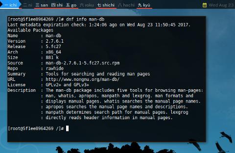 Docker DNF: Package Show Info