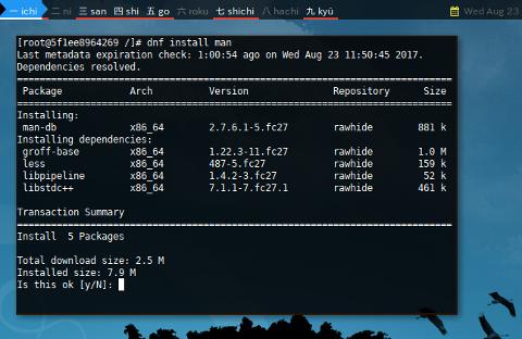 Docker DNF: Package Install
