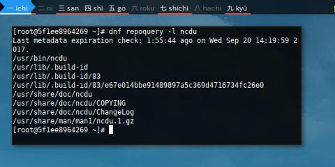 Docker DNF: List File