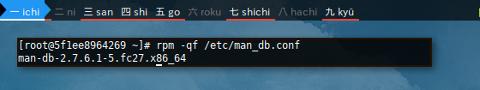 Docker RPM: Query File