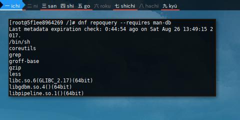Docker DNF: Repoquery Requires