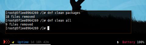 Docker DNF: Clean