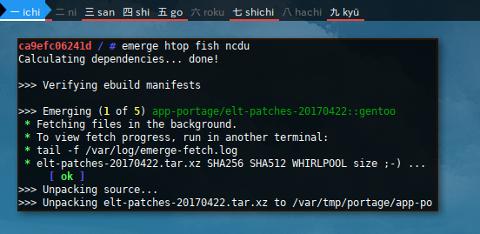 Docker Emerge: Install Package