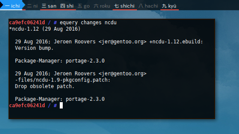 Docker Gentoo: equery changes