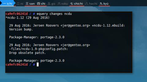 Docker Gentoo: equery changes