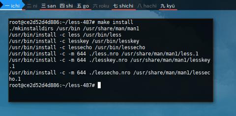 Docker LFS: less: make install
