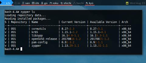 Docker Zypper: List Update