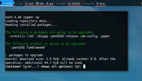 Docker Zypper: Update