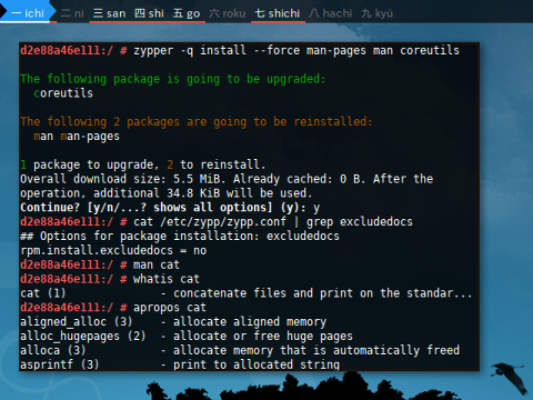 Docker openSUSE: Enable Manual Issue
