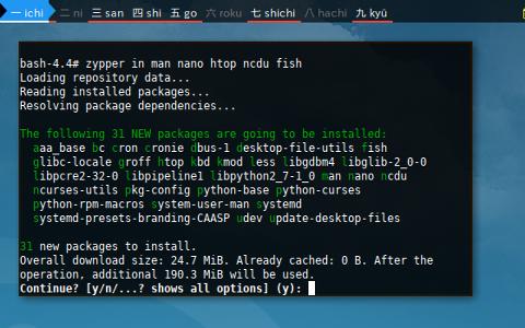Docker Zypper: Install