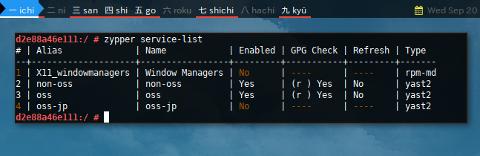 Docker Zypper: service list