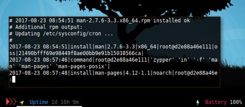 Docker: /var/log/zypp/history