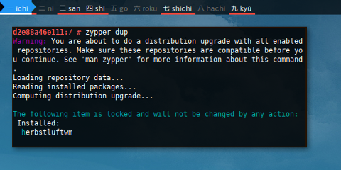 Docker Zypper: dup locked
