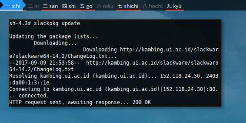 Docker Slackware: Update Use Kambing