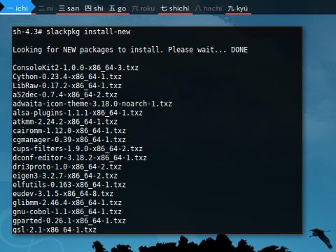 Docker Slackpkg: lock example