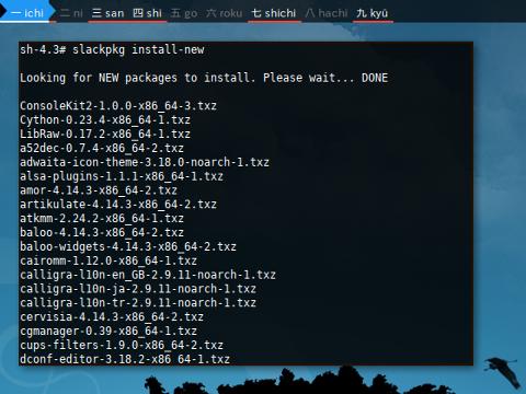 Docker Slackpkg: unlock example
