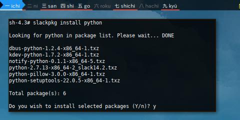 Docker slackpkg: Install Python