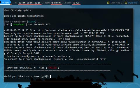 Docker slpkg: Update Certificate Error
