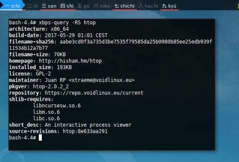 Docker Void: XBPS Show Info