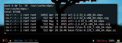 Docker XBPS: Cache