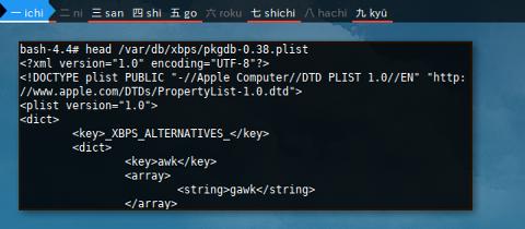Docker XBPS: /var/db/xbps/
