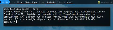 Docker XBPS: xbps-install -Suvn