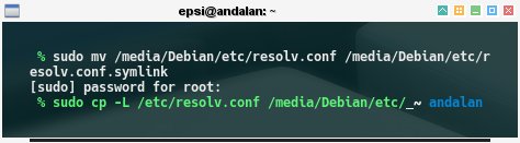 chroot: Debian: rename /etc/resolv.conf