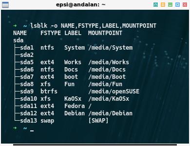 Multiboot: custom: lsblk -o