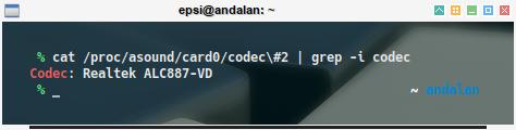 audio: codec /proc